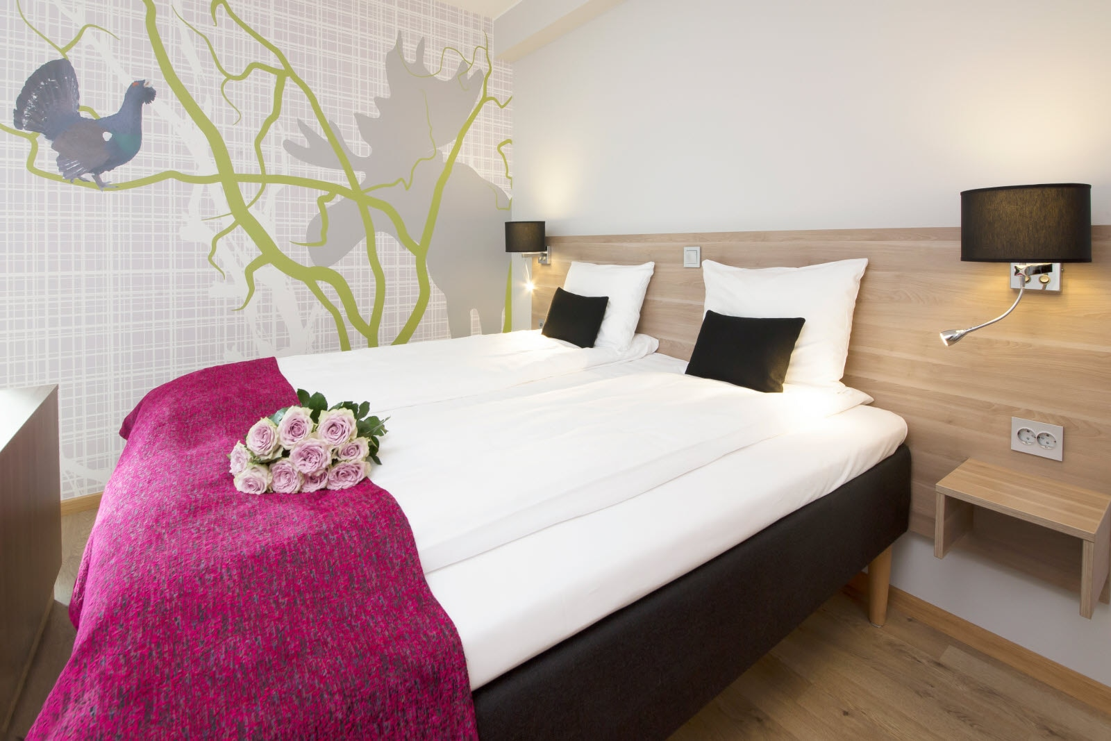 Scandic Elgstua, Junior suite