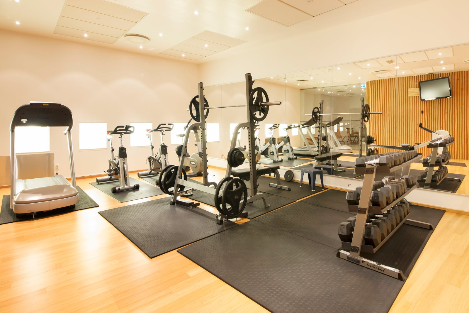 Scandic Parken, Alesund, gym, fitness