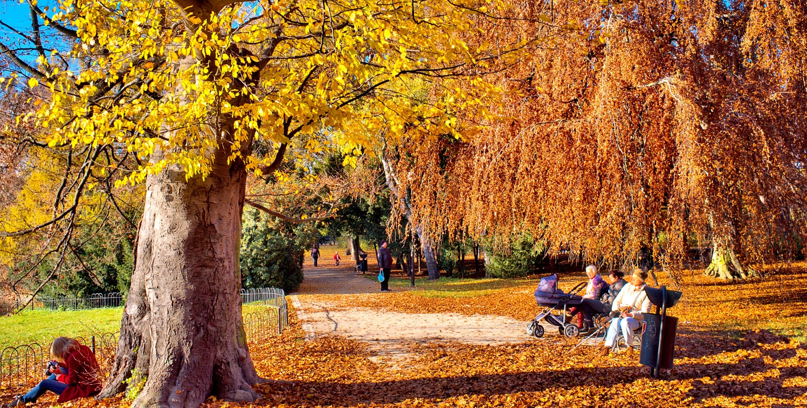 People relaxing in the automnal park