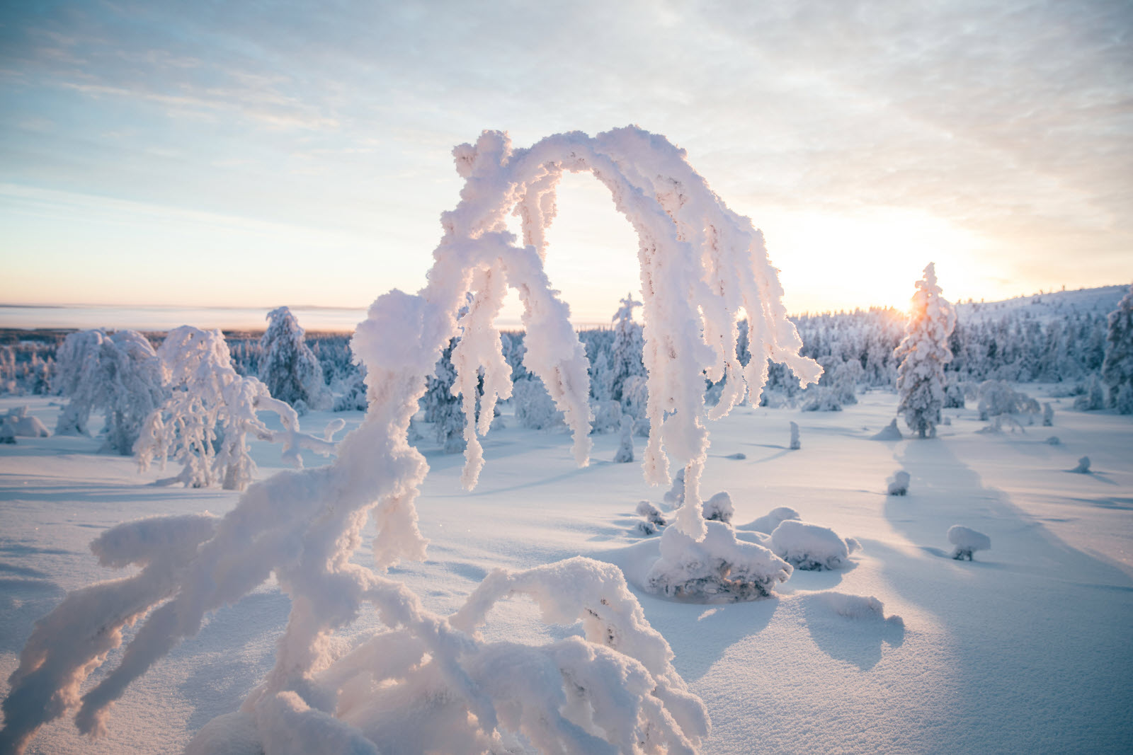 Sunny winter day in Finnish Lapland